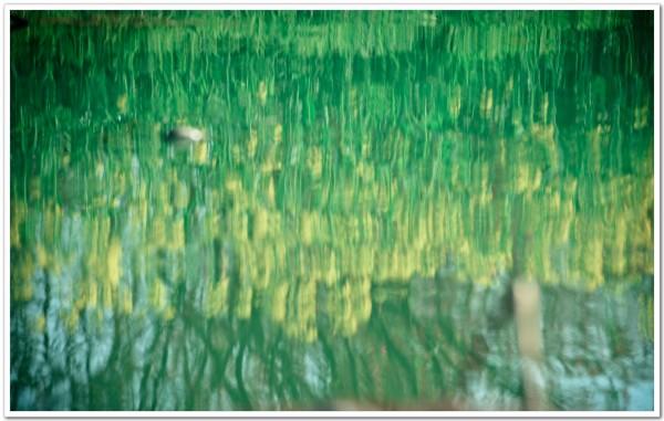 太湖旅游攻略图片