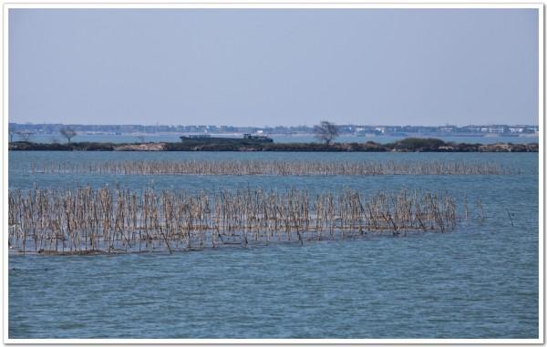 太湖自助游图片
