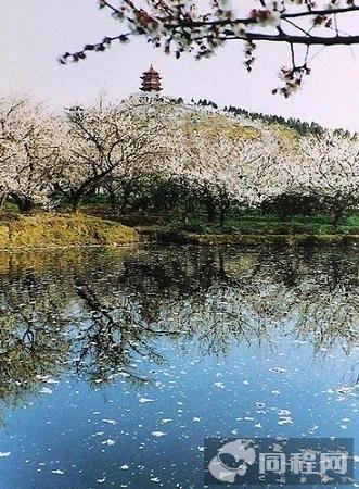 """吴中旅游给力""""中华文化游""""主题年"""
