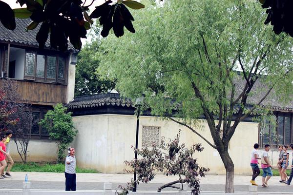苏州自助游图片
